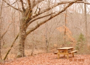 lawrenceville-picnic-table