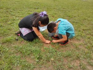 La Crosse Elementary students learn about the Tobacco Heritage Trail